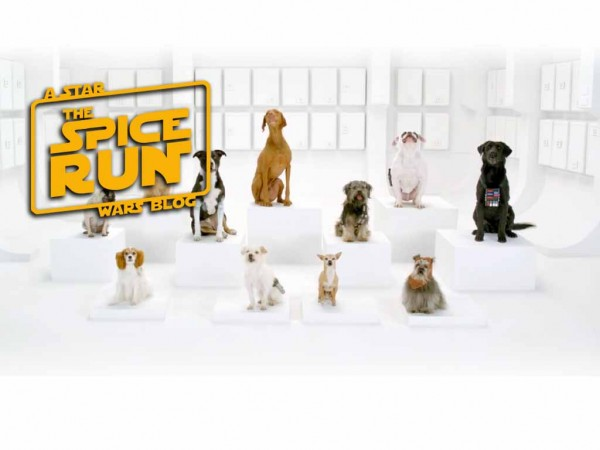 The Spice Run – THE BARK SIDE! New VW Commercial will have you howling!